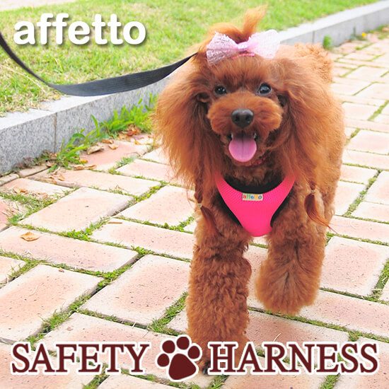 Safety Harness_PInk1